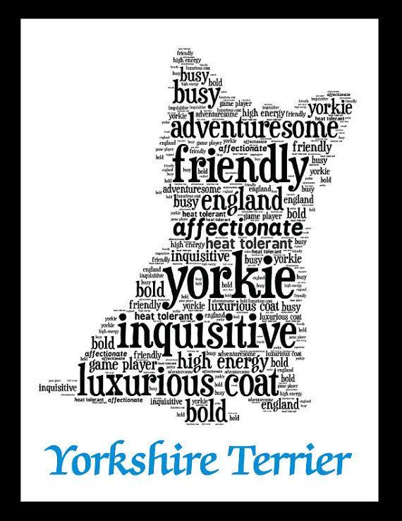 Yorkshire Terrier Art Illustration Artwork on Etsy, $20.00                                                                                                                                                                                 Mehr