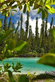 ღღ Loyalty Islands, New Caledonia ~~~ New Caledonia is a special collectivity of France located in the southwest Pacific Ocean, 1,210 kilome...
