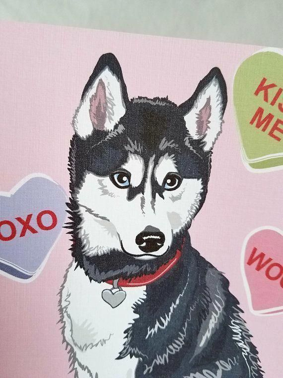 The Many Things We All Like About The Playful Siberian Husky Pups