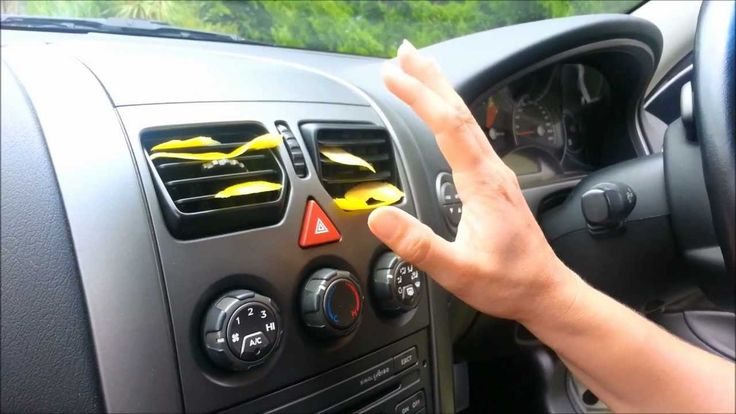 how to get rid of love bugs on your car