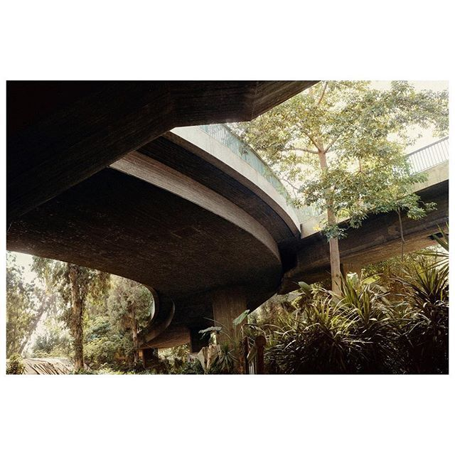 Magnum photographer Moises Saman's self-published photobook Discordia is shortlisted for the 2016 Anamorphosis Prize. The book explores the Arab Spring through a personal and intimate portrait of daily life during the unrest.  Signed copies of Discordia are available from shop.magnumphotos.com now.  PHOTO: Highway overpass above Gezira Park. Cario, Egypt. 2011. © #MoisesSaman/#MagnumPhotos