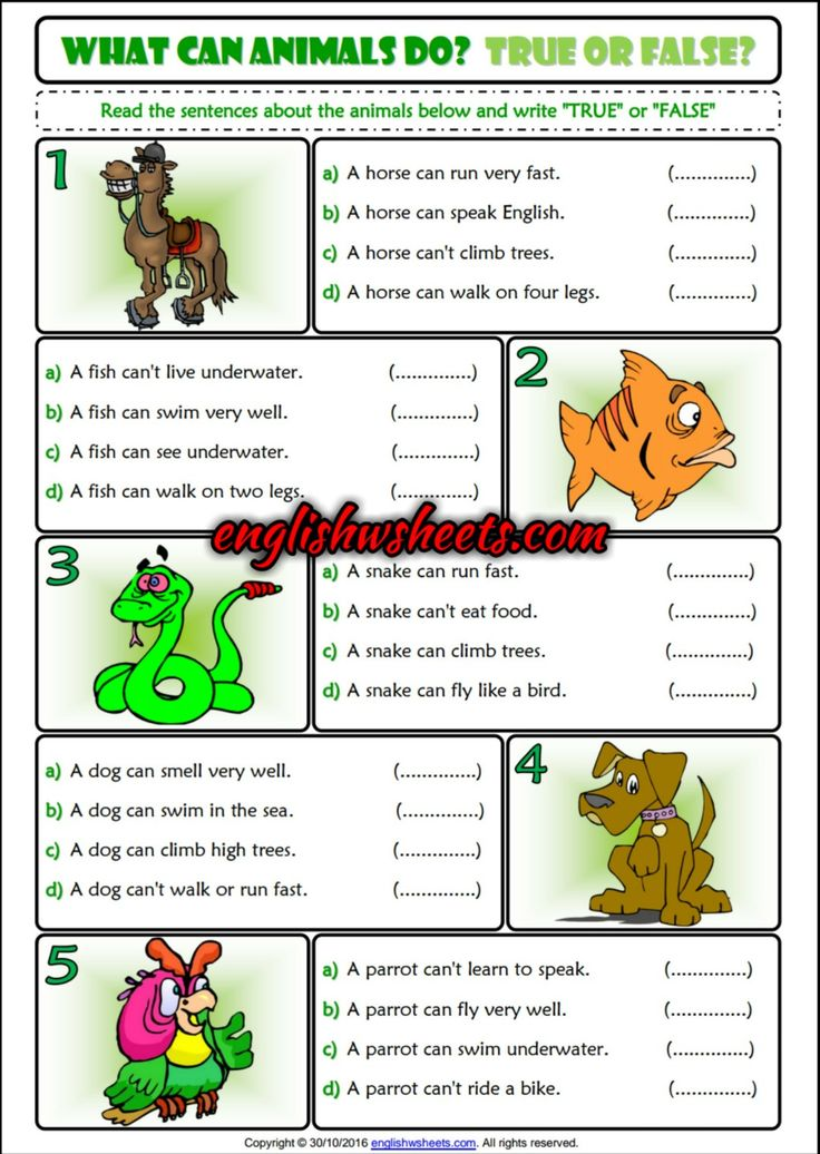 What can animals do? True or False ESL Printable Grammar Exercise Handout #ability #inability #can #can't #true #false #Esl #Grammar #Exercise #handout #Efl #Tefl #Esol #Tesol #Eal #language #arts #languagearts #Printable
