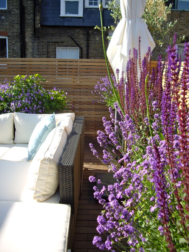 Roof terrace with contemporary styling, Marylebone, London. Slatted wooden screens and purple planting including Lavandula angustifolia, Salvia nemorosa 'Caradonna', Agapanthus and Geranium 'Rozanne'.
