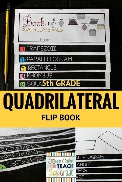 math quadrilateral flip book for 5th grade