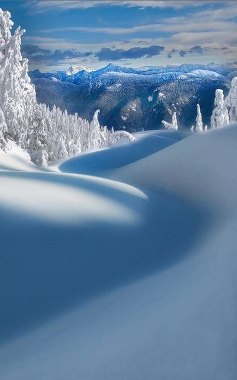Mt. Seymour Provincial Park in North Vancouver, British Columbia, Canada • photo: Kevin McNeal on Flickr