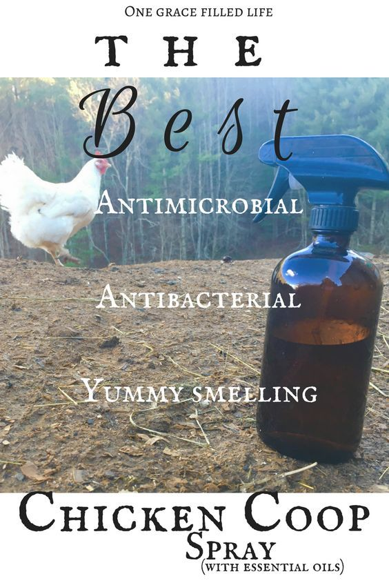 How to make an awesome cleansing spray for your chicken coop!