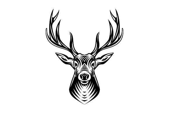 Deer Head Illustration Front View By Weer On Creativemarket Deer Head Illustration Deer