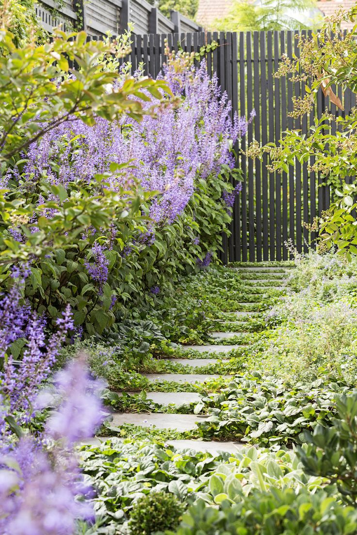 Outstanding  Best Images About Designer Gardens On Pinterest  Gardens L  With Inspiring Designed By Lisa Ellis Gardens With Lovely Parkers Gardening Also Ideas For Painting Garden Walls In Addition Magic Garden Party And Regency Garden Kharghar As Well As Winter Gardens Blackpool Parking Additionally Cranbourne Gardens From Pinterestcom With   Inspiring  Best Images About Designer Gardens On Pinterest  Gardens L  With Lovely Designed By Lisa Ellis Gardens And Outstanding Parkers Gardening Also Ideas For Painting Garden Walls In Addition Magic Garden Party From Pinterestcom