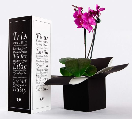 """""""Fresh Flowers: My goal was to create a sturdy and intriguing package for flowers and plants for easy transporting. The plastic wrap fresh flowers are placed in today don't protect the plant's fragility. It also doesn't support a base in which you can easily travel it from one place to another, especially in your car! I choose to make the color palette black and white not only for simplicity but to allow the colors of the flower to pop!"""""""