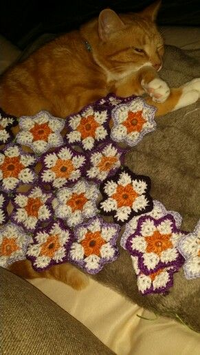 My ginger kitty Mr Roo trying to sleep under a flower throw I'm making...