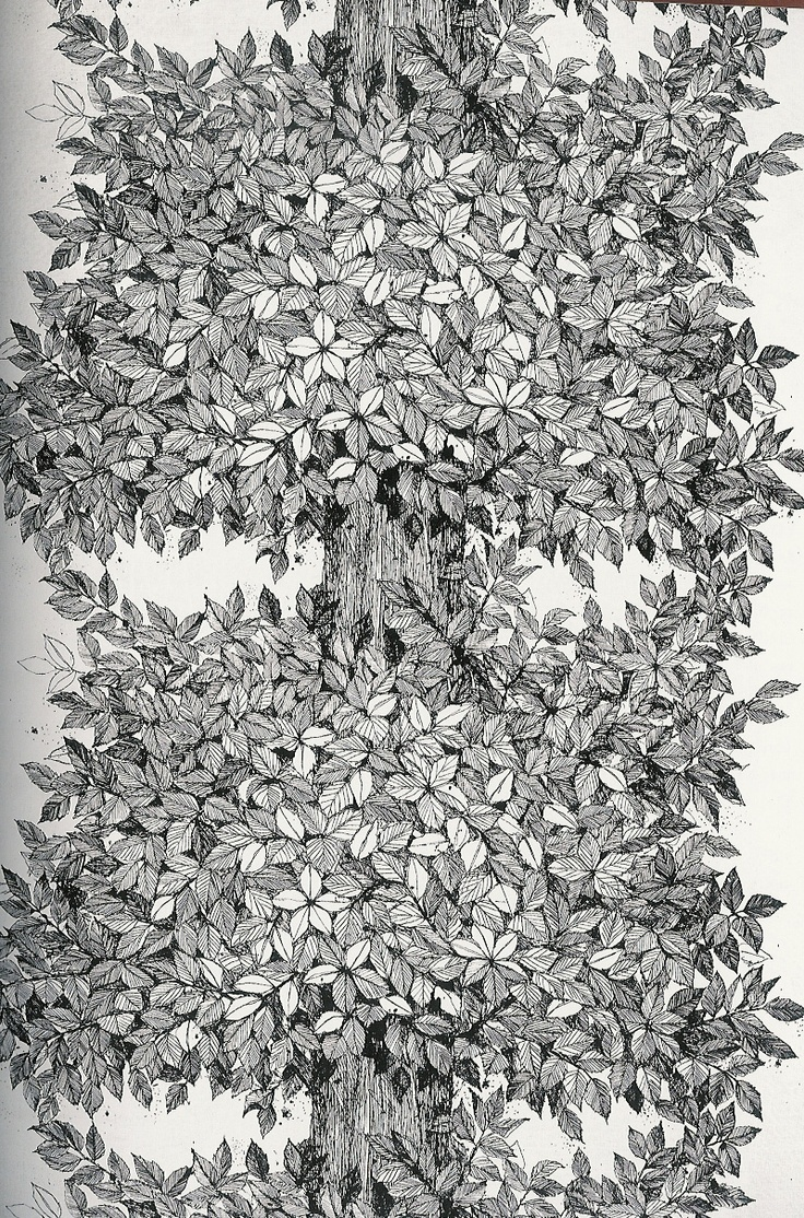 """""""Hassel"""" pattern by Viola Gråsten from 1958"""