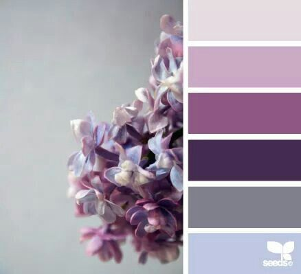 Lovely Lilac & Lavender Tones.