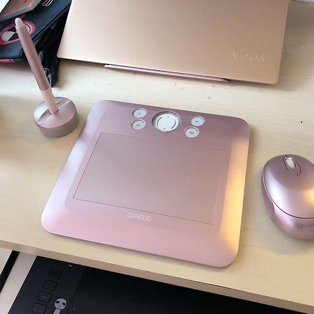 My little travel sized tablet is here! \o/  It's a wacom bamboo fun cte 450, the same model as my first tablet which I loved. Snagged on yahoo auctions japan. Im gonna name her apricot