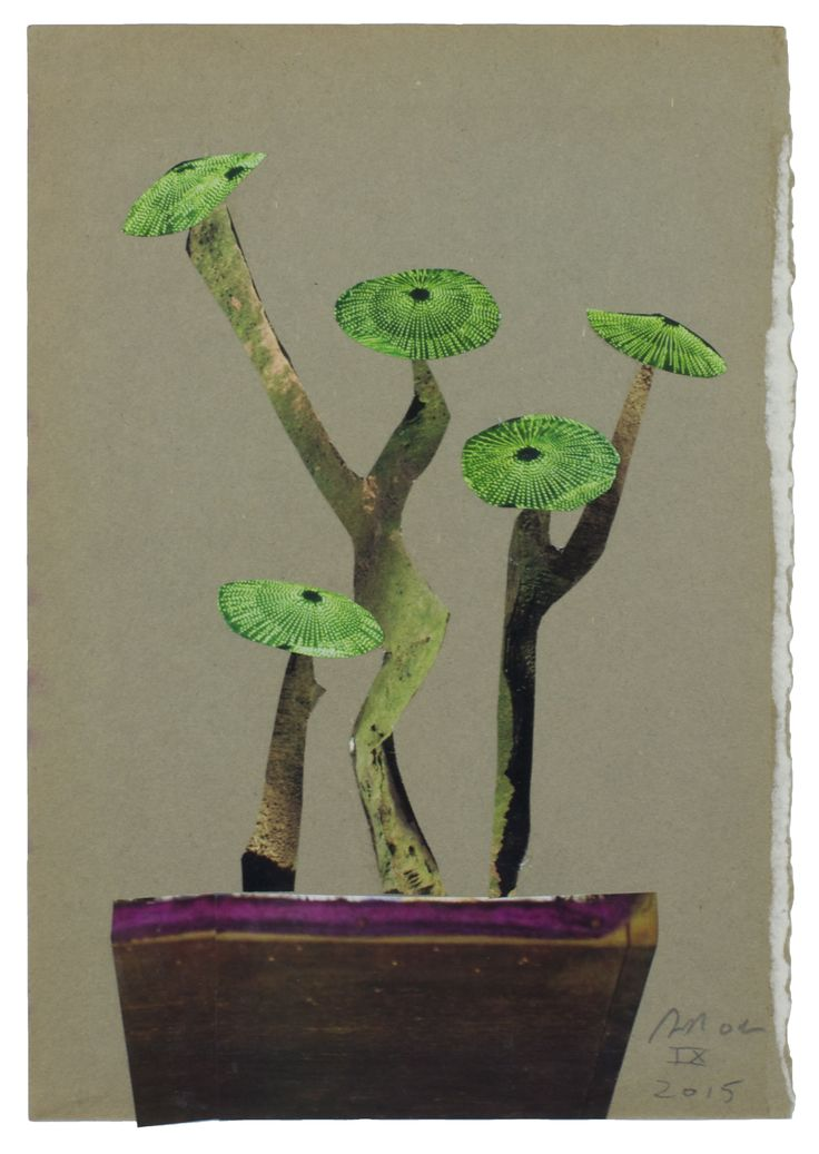 Anke Roder 'Bonsai' 2015 collage 24 x 16,5 cm
