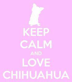 Keep calm and LOVE CHIHUAHUA #KeepCalm #LoveChihuahua