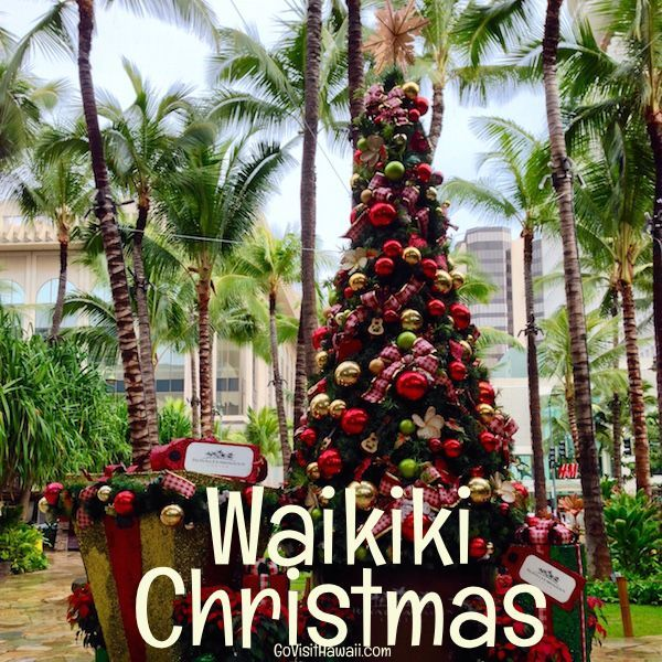 Hilton Head Island Christmas Events 2020 Video: Hilton Head Island Community Christmas Tree lighting in