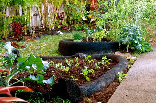 Bairro suíço cria horta comunitária e cada morador planta um alimento para compartilhar com outros