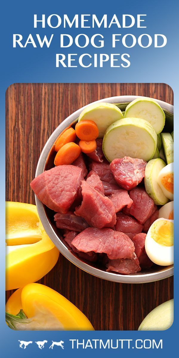 Homemade Raw Dog Food Recipes Senior Dogs Make Dog Food