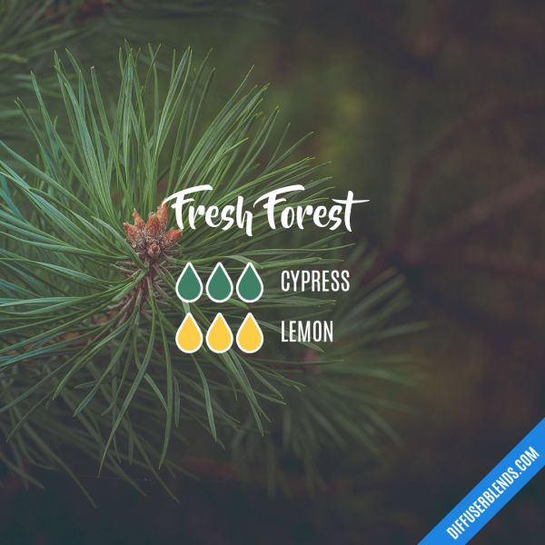 Fresh Forest - Essential Oil Diffuser Blend