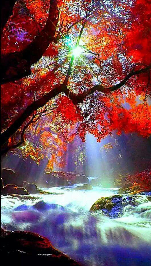 Autumnal 765 best Der Herbst images on