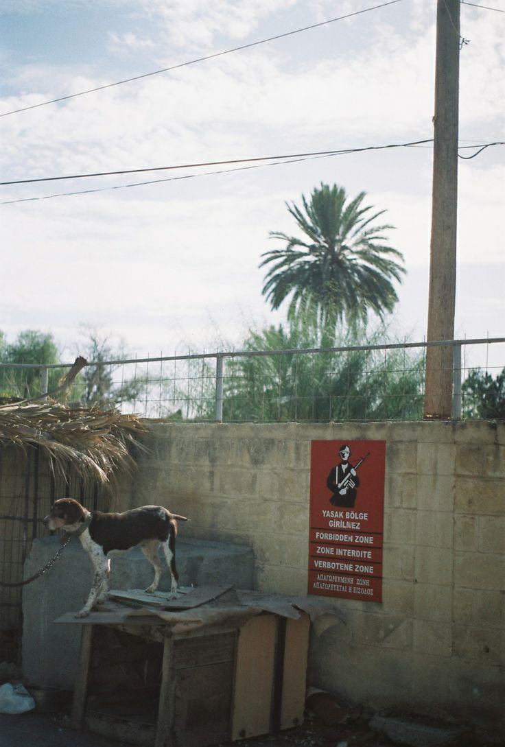 The wall dividing Nicosia, #Cyprus