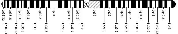 Genes I need to review    Genetics Home Reference includes these genes on chromosome 1