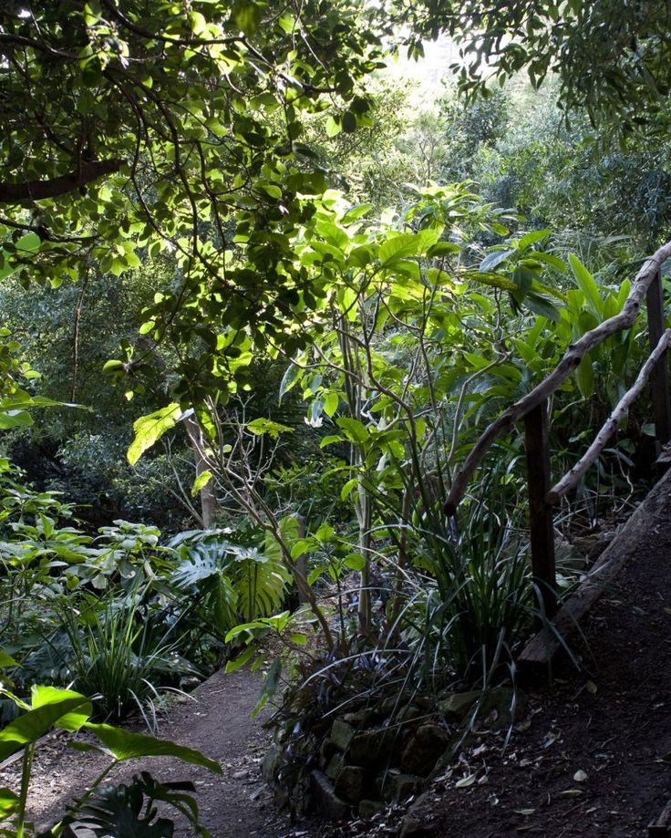 Wendy Whiteley's Garden, Lavender Bay, Sydney