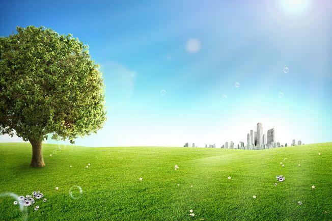 تحميل خلفية طبيعه خضراء وشجره وأبراج سكنيه Psd Nature Tree Nature Tree