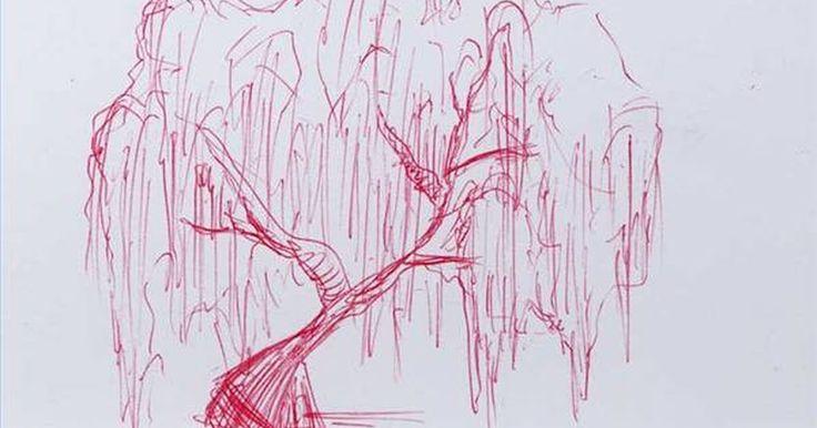 Como desenhar um salgueiro chorão. O salgueiro chorão é uma árvore das mais expressivas encontradas. Por causa da sua forma caída e longas folhas que, às vezes, tocam o chão, ela parece que está chorando ou lamentando. Por ser uma árvore tão diferente de outras, ela pode ser trabalhosa para se desenhar. Usando formas e linhas básicas, pode-se desenhar um esboço bem expressivo de um ...