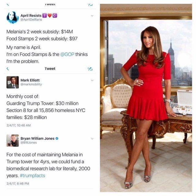 """""""It turns out welfare queens DO exist"""" - reddit EnoughTrumpSpam"""
