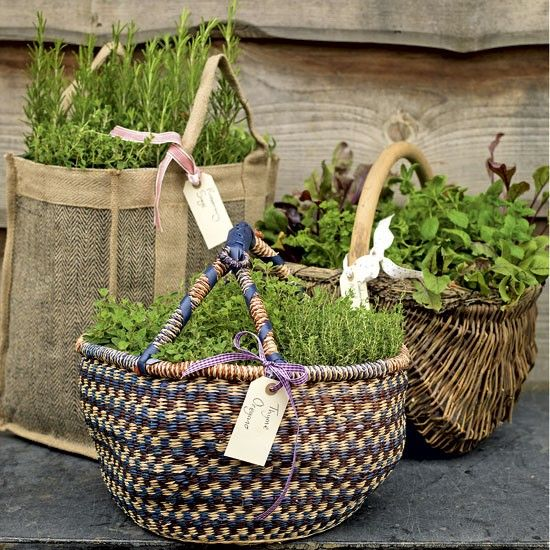 Such a pretty idea for herbs...would worry that the baskets would rot though!