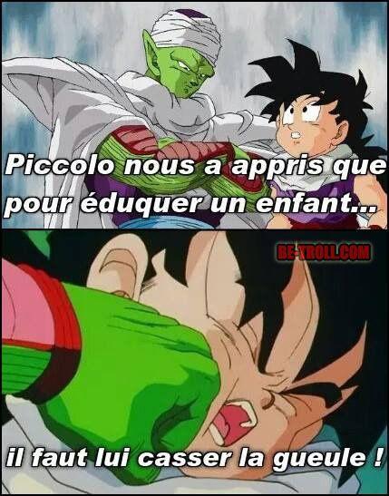 Une chose que Piccolo nous a apprit... - Be-troll