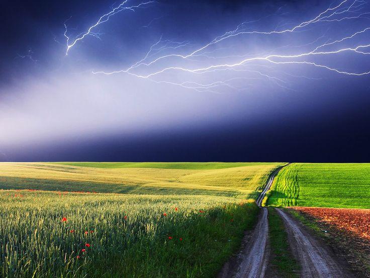 Nature Colorful Scene