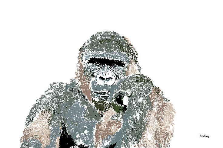 Sale 10 - 25% OFF Use promo code RYCUBL Good on all Prints See details....,david bridburg,music notes 23,ape,thoughtful john,great ape,hominoidea,old world tailless anthropoid primates,native to africa,catarrhine clade,brachiation,superfamily hominoidea,hominids,hominids,endangered species,