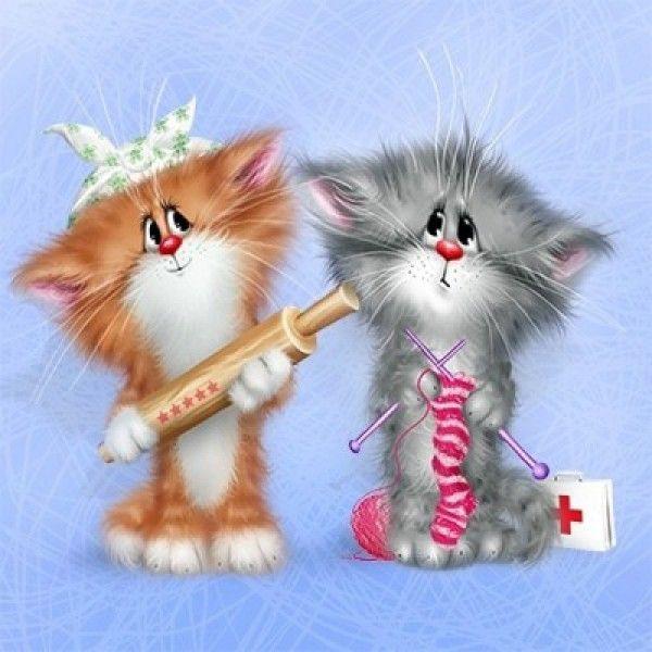 приколы открытки коты можно