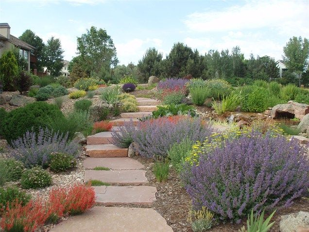Xeriscape small front yard xeriscape landscaping for Hillside landscaping plants