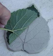 bricolage feuilles - Recherche Google