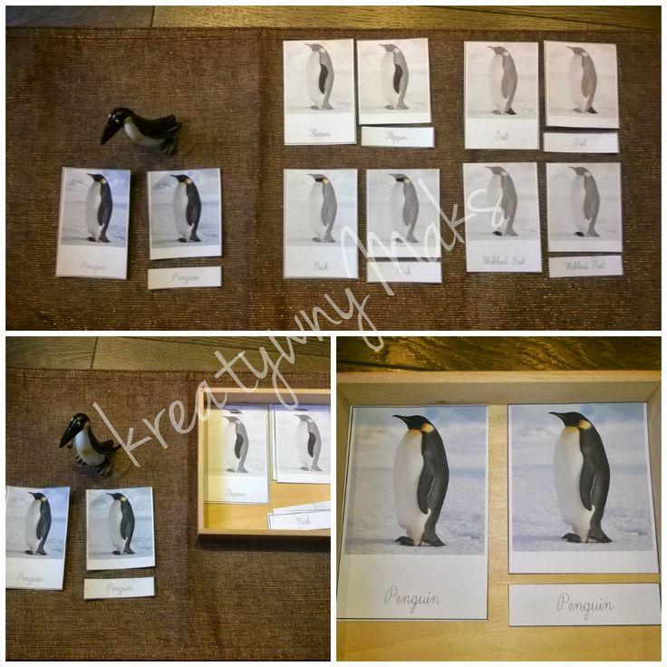 kreatywnyMaks: Polarne zwierzęta :) Montessori