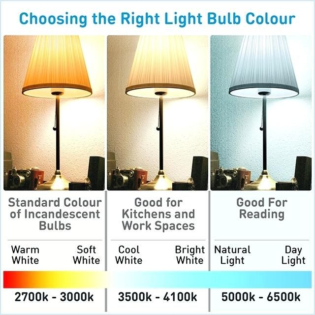 Image Result For Daylight Light Bulbs White Light Bulbs Bulb Light