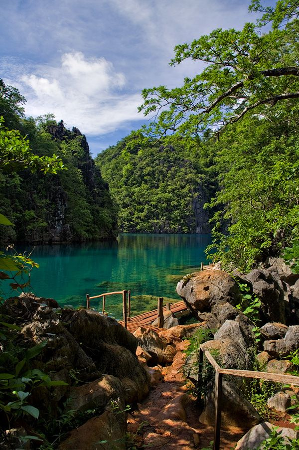Lake Kayangan, Coron, Palawan, Philippines - Asia's largest fresh water lake.