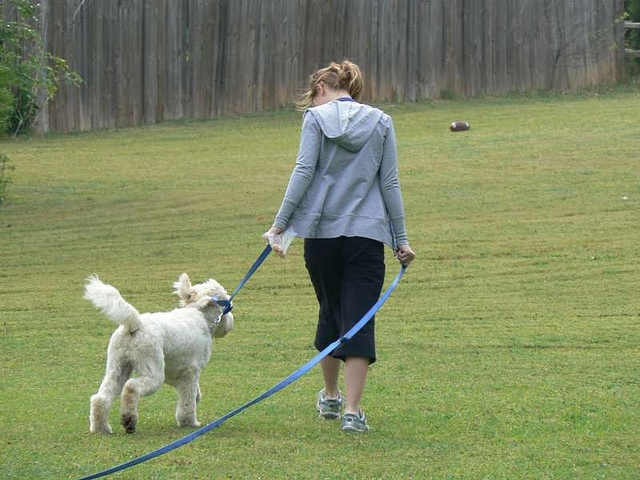 Dog Training In Charlotte has also been recognized on national TV Dog Training in Charlotte has regular appearances on local news networks.    Contact Us  Dog Training In Charlotte NC  Bruce Allen  Animal Behavior Specialist  1800 Camden Rd,  Suite 10756,  C get access to free 5 day dog training websites http://FreeDogTraining.bestonlineproducts.net/