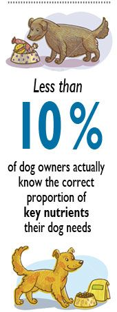 Dog Nutrition break-down! This is super informative! Check it out!