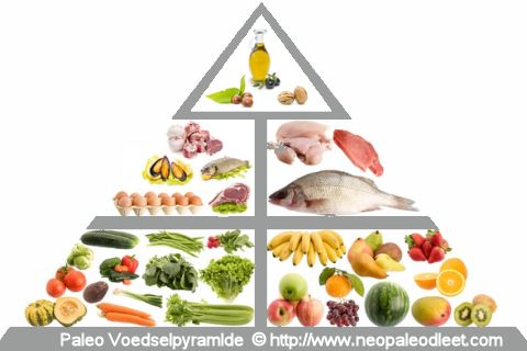 Paleo Voedselpyramide