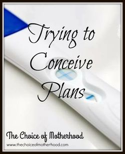 Trying to Conceive Plans