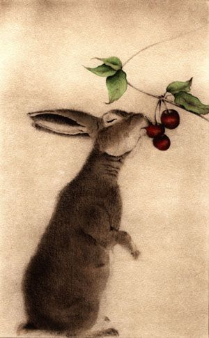 Lapin aux Cerises - Page  (Rabbit with Cherries)  Hand Watercolored Etching~by C.C. Barton