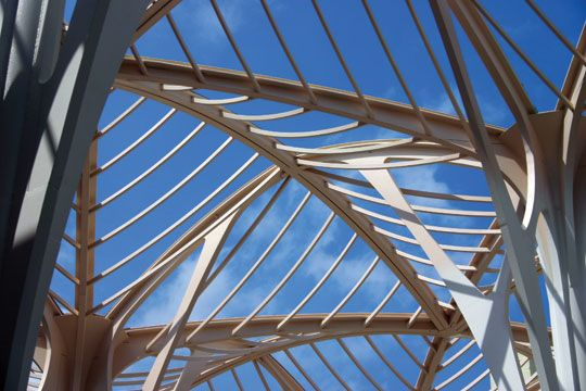 Structural Engineering Magazine : Best images about tree like steel structures on