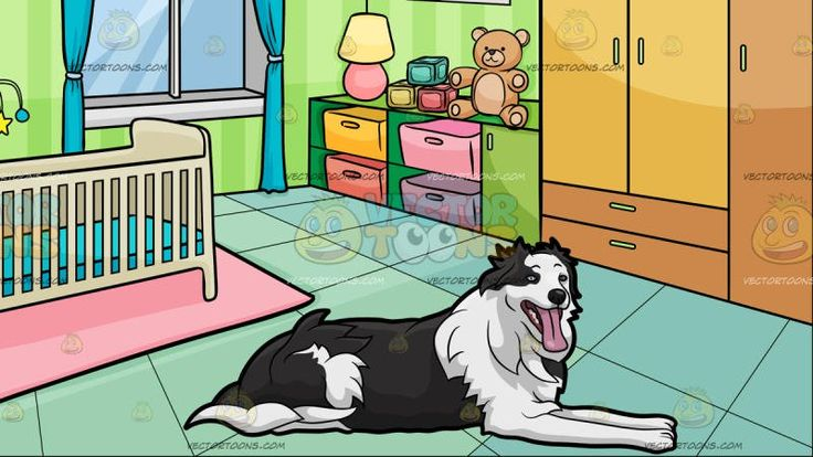 A Border Collie Dog Taking A Break With A Bedroom Of A Baby Background:   A dog with black and white fur black nose and eyes looking ahead while relaxing on the surface mouth opened showing its pink tongue and A room with striped green wallpapers blue green floor pink carpet with a beige crib and satellite teal curtains light brown closet with colored shelves paintings and frames lamps and a stuffed teddy bear