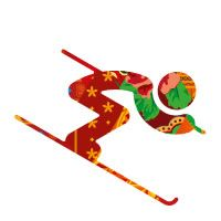 Olympic Games Sochi 2014   Hockey, Skating, Skiing, Luge, Curling