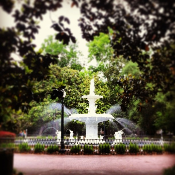 10+ Images About Forsyth Park Fountain On Pinterest