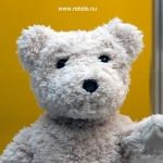 This social robot bear is so experimental it doesn't even have a name. Bearbot can monitor your gran's wellbeing and relay that info to you. Now you have time to do her groceries.